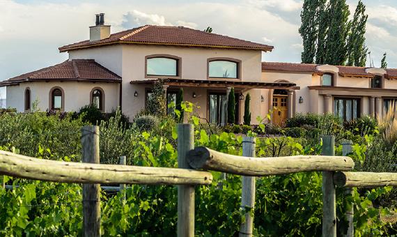 Algodon Estate Weingut in Argentinien Import Wein