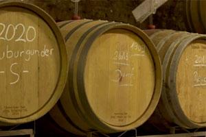 Weinfässer Gut Adelseck